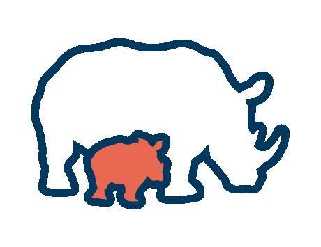 Rhino Orphanage Project